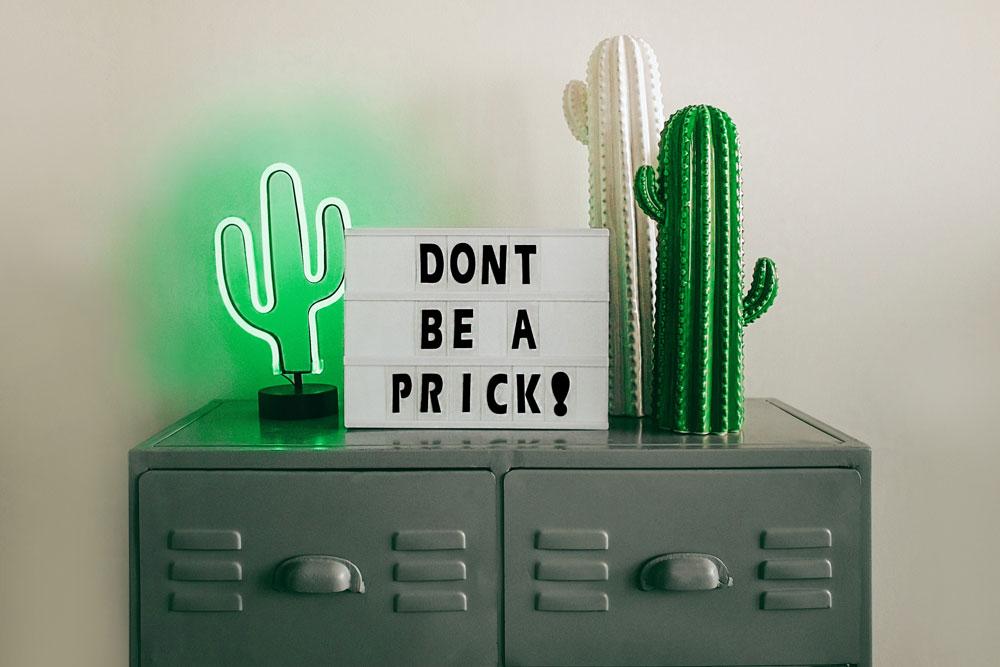 No seas bobo